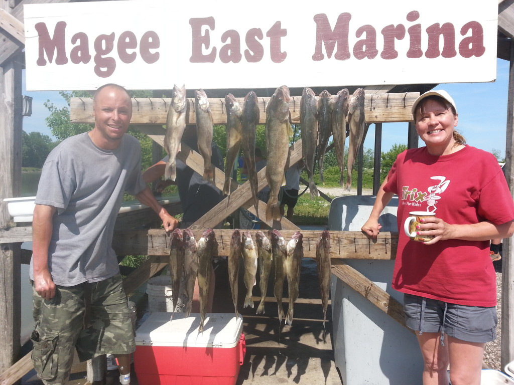 walleye charter lake erie June 2014