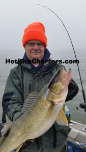 Big Lake erie walleye caught trolling Warrior lures in Apil