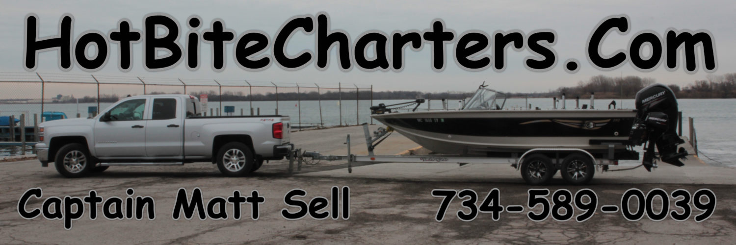 Hot Bite Charters